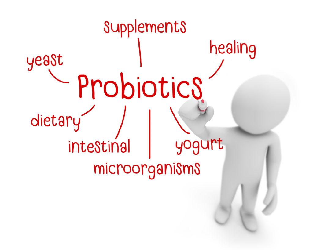 comprar probiotic correctament